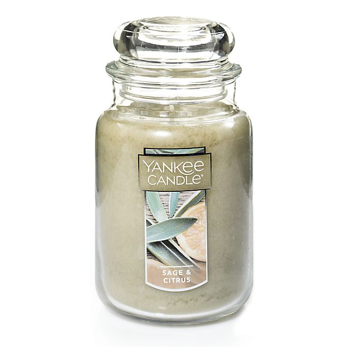 Alternate image 1 for Yankee Candle® Housewarmer® Sage & Citrus Large Classic Jar Candle
