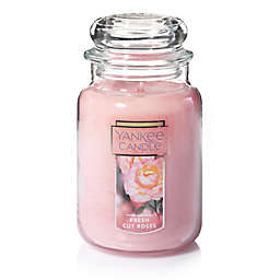 Yankee Candle® Housewarmer® Fresh Cut Roses Large Classic Jar Candle