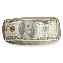 Wow Works $100 Bill Throw Pillow in Green/White