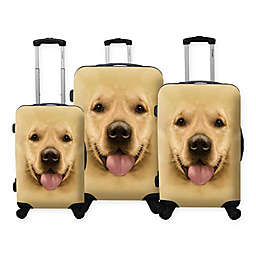 Chariot Labrador 3-Piece Hardside Spinner Set in Yellow