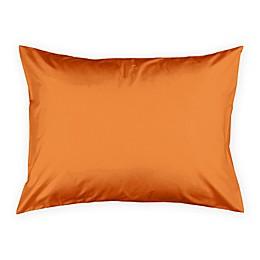 Designs Direct Duck Face Friend Standard Pillow Sham in Yellow