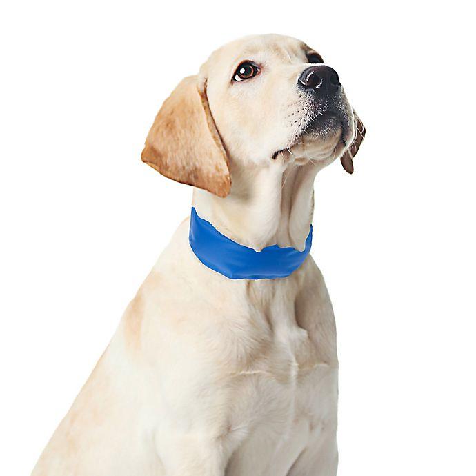 Alternate image 1 for Permaker Large Cooling Pet Collar in Blue
