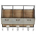 Kate and Laurel Arnica Rustic Wall Storage with Hooks in Brown