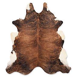 Safavieh Gaucho 4-Foot x 6-Foot Area Rug in Black/Brown