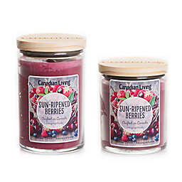 Canadian Living Sun Ripened Berries Jar Candle