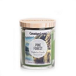 Canadian Living Pine Forest 8 oz. Jar Candle