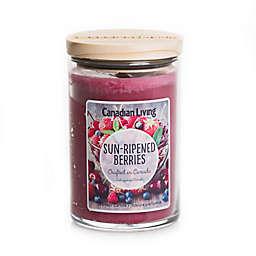 Canadian Living Sun Ripened Berries 10 oz. Jar Candle