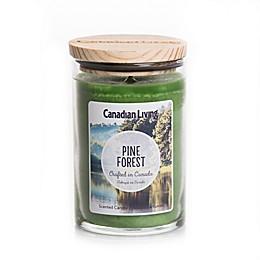 Canadian Living Pine Forest 10 oz. Jar Candle
