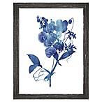 PTM Images  Indigo Flora I  13.5-Inch x 17.5-Inch Print Wall Art