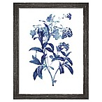 PTM Images  Indigo Flora II  13.5-Inch x 17.5-Inch Print Wall Art