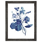 PTM Images  Indigo Flora III  13.5-Inch x 17.5-Inch Print Wall Art