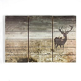 Highland Stag 3-Piece Wood Print Wall Art