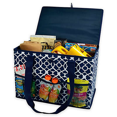 Picnic at Ascot 12-Inch x 18-Inch Collapsible Storage Organizer