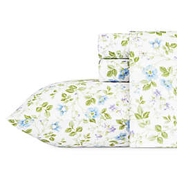 Laura Ashley® Spring Bloom Flannel Sheet Set in Blue