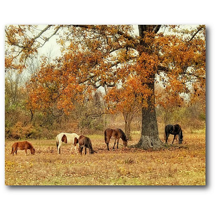 Alternate image 1 for Courtside Market Calmly Grazing 16-Inch x 20-Inch Canvas Wall Art