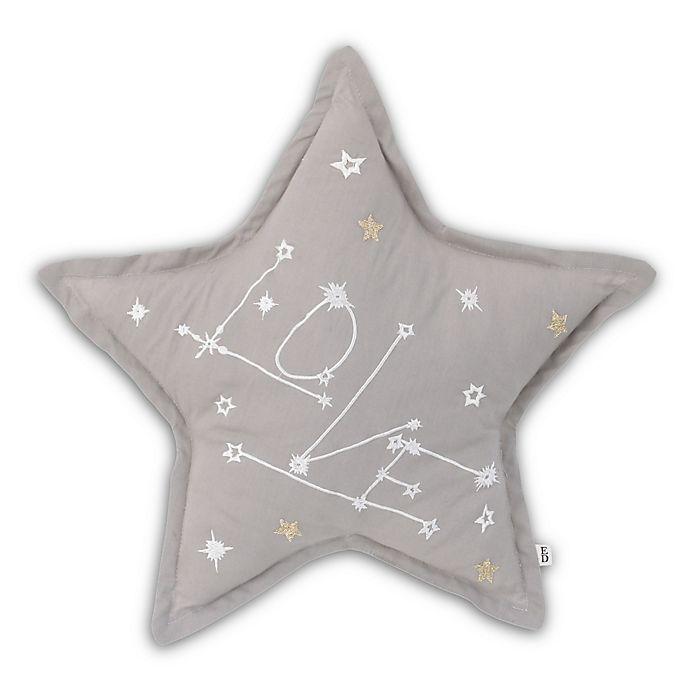 Alternate image 1 for ED Ellen DeGeneres Starry Night Embroidered Star Throw Pillow