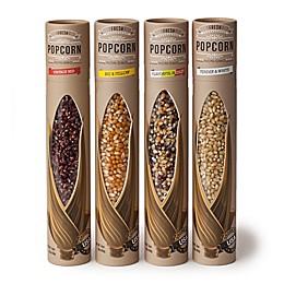 Wabash Valley Farms™ 4-Pack Fresh Popcorn Kernel Tubes