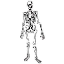 Learning Resources® Skeleton 15-Piece Floor Puzzle