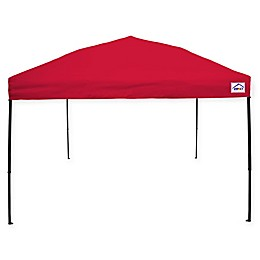 Impact Canopy 10-Foot x 10-Foot Ez Up Instant Canopy