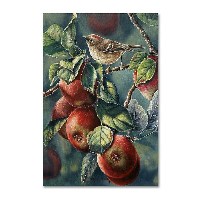 Alternate image 1 for Wanda Mumm 'Apples And Ruby Crown' Canvas Wall Art
