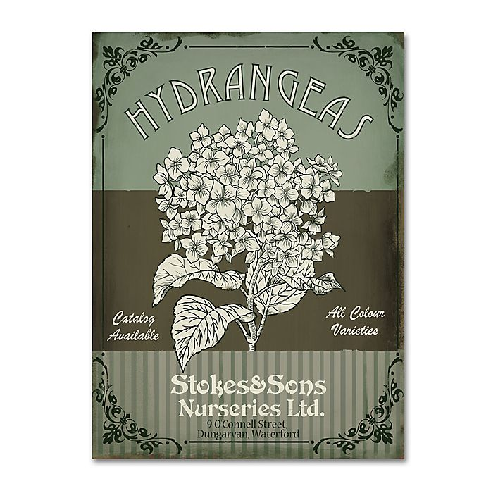 Alternate image 1 for Fiona Strokes-Gilbert Flower Shop II 24-Inch x 32-Inch Canvas Wall Art