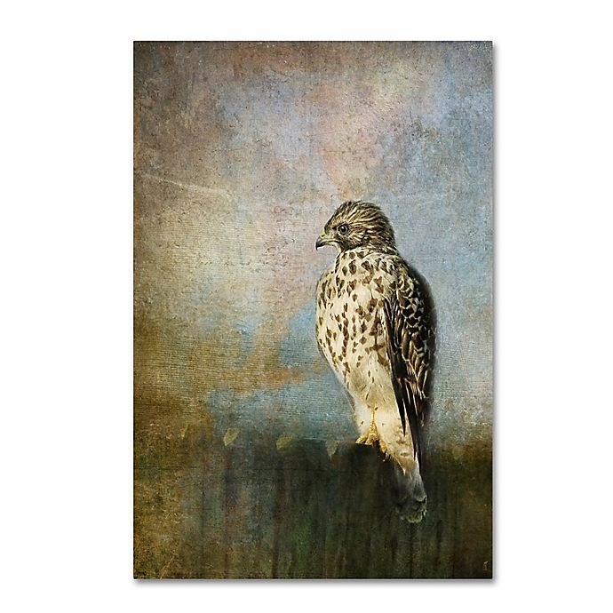 Alternate image 1 for On The Fence Red Shouldered Hawk 30-Inch x 47-Inch Canvas Wall Art