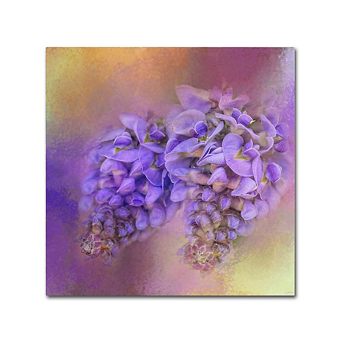 Alternate image 1 for Jai Johnson Enticing Wisteria 24-Inch Square Canvas Wall Art