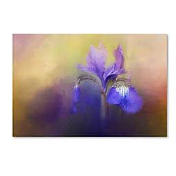 Tiny Iris Canvas Wall Art