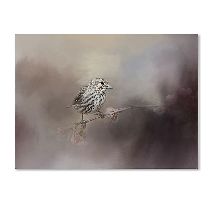 Alternate image 1 for Just A Whisper of Feathers Canvas Wall Art