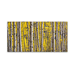"Hugh Evans ""Aspen Colorado"" Canvas Wall Art"