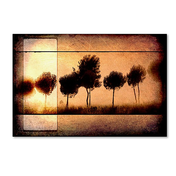 Alternate image 1 for LightBoxJournal Love of Trees I Canvas Wall Art