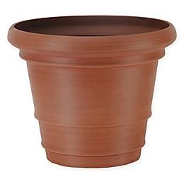 Arcadia Garden Products Double Rim Pot