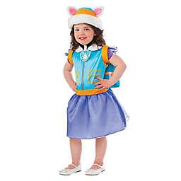 Paw Patrol: Everest Classic Child's Halloween Costume