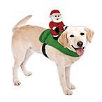 Santa on a Dog Holiday Accessory