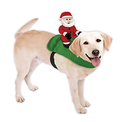 Santa on a Dog Holiday Accessory