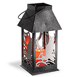 National Tree Company® LED Owl Lantern in Black/Silver