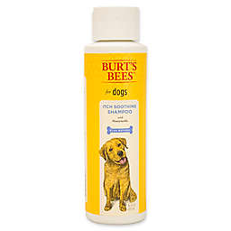 Burts Bees® 16 oz. Itch Soothing Shampoo for Dogs