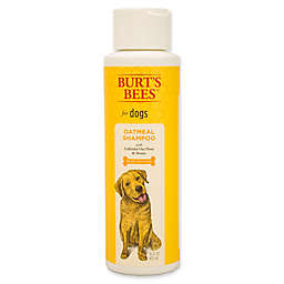 Burt's Bees® 16 fl. oz. Oatmeal Shampoo for Dogs