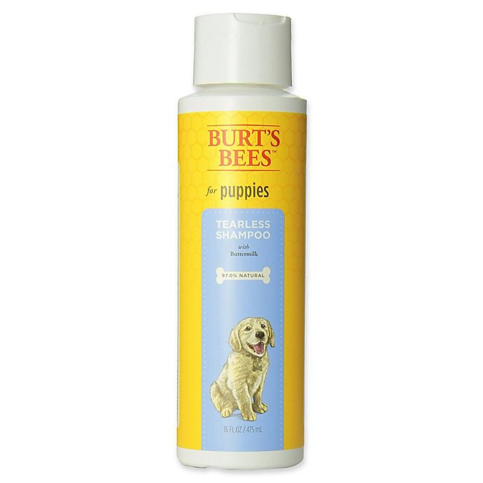 Alternate image 1 for Burt's Bees® 16 fl. oz. Tearless Puppy Shampoo & Conditioner for Dogs