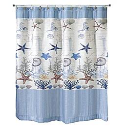 Avanti Antigua Shower Curtain Collection