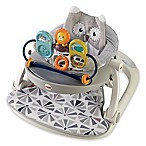 Fisher-Price® Owl Sit-Me-Up Floor Seat