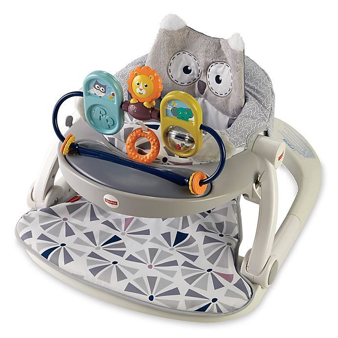 Alternate image 1 for Fisher-Price® Owl Sit-Me-Up Floor Seat