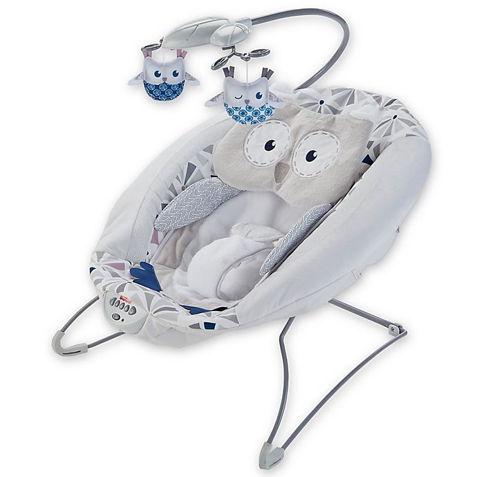 Alternate image 1 for Fisher-Price® Deluxe Bouncer in Owl Love