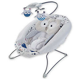 Fisher-Price® Deluxe Bouncer in Owl Love
