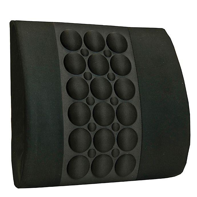 Alternate image 1 for Ergo Back Cushion