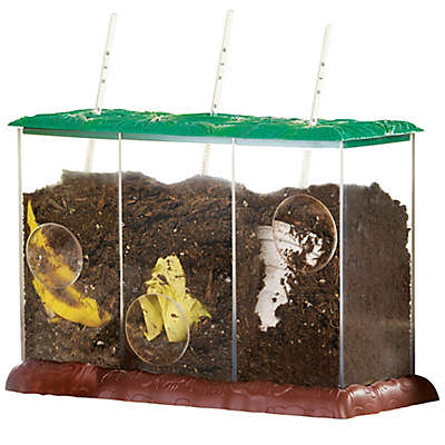 Educational Insights® Now Your See It Now You Don't See-Through Compost Container