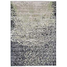 Weave & Wander Alessandria Fluid Print 10' x 13'2  Area Rug in Gray/Mint Green