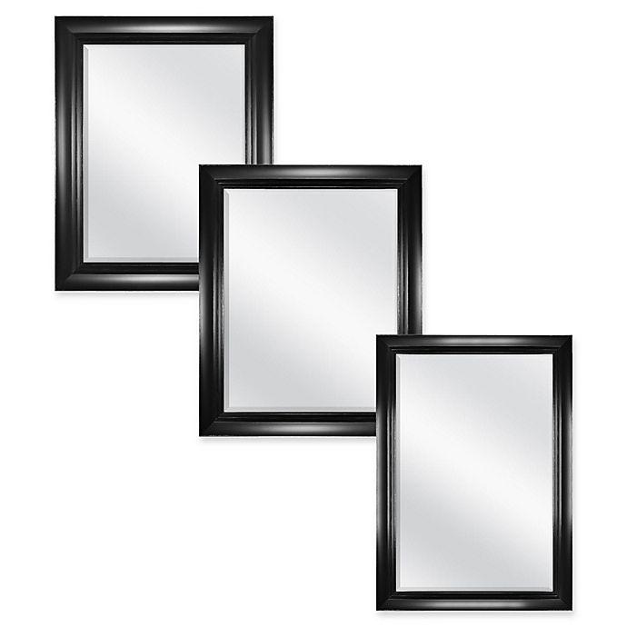 Alternate image 1 for Carson Wall Mirror in Black/Silver