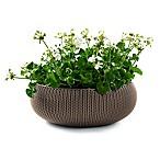 Keter® Cozies Knit Round Resin Indoor/Outdoor Planter in Harvest Brown