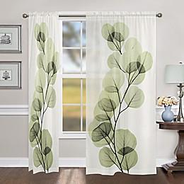 Laural Home Eucalyptus X-Ray Rod Pocket Sheer Window Curtain Panel